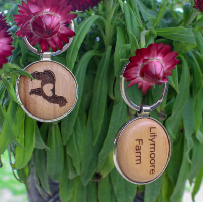 Lilymoore Key chain