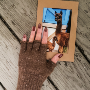 Find the perfect gift at american made alpaca
