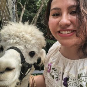 alpaca and her friend