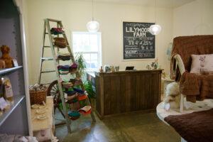 alpaca farm store in dutchess county, NY