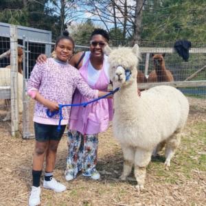 Family walking an alpaca